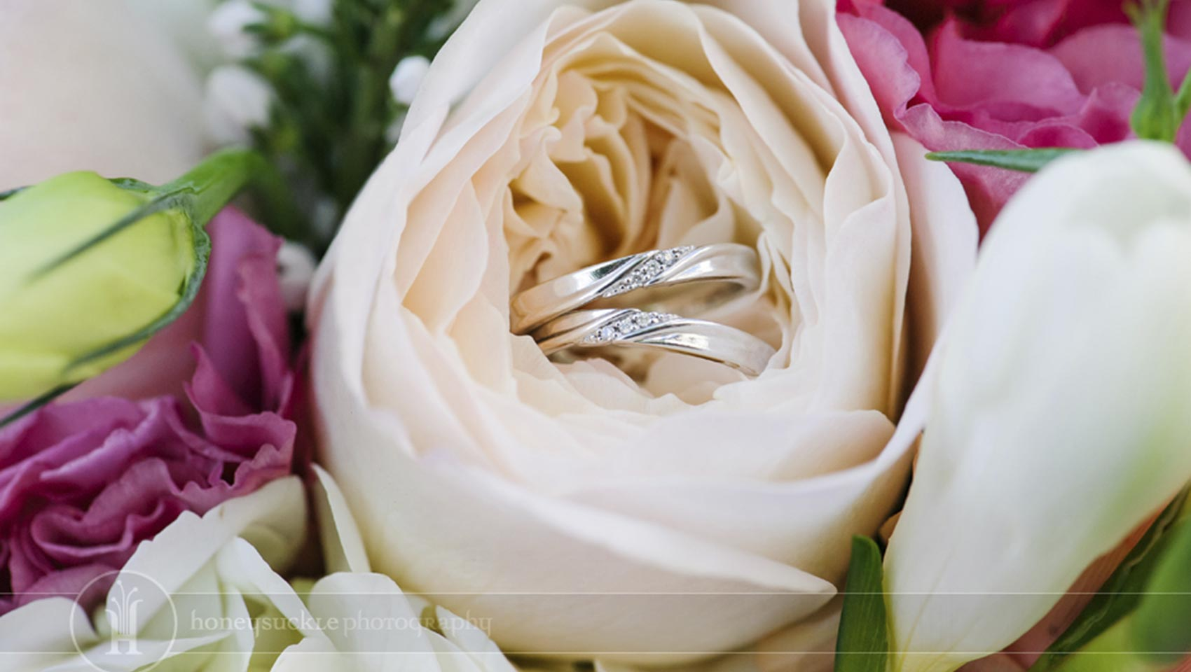 wedding rings nestled in white rose